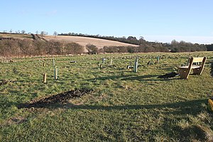 Natural Burial Site, Scraptoft. See http://www...