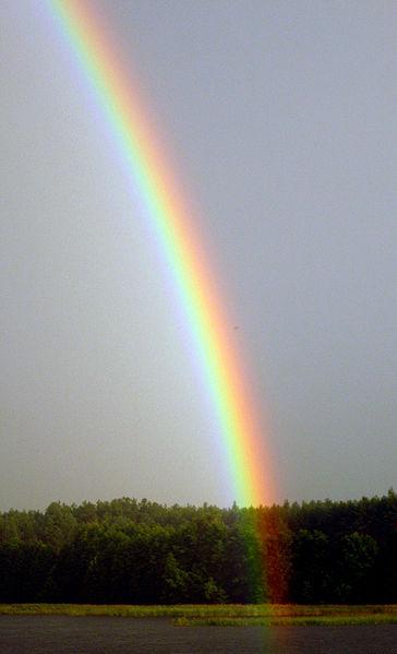 File Rainbow Above Kaviskis Lake Lithuania Jpg Wikipedia