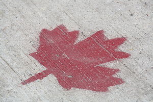 A maple leaf painted on a sidewalk using a ste...