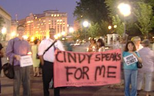 Protesters at the White House support Cindy Sh...