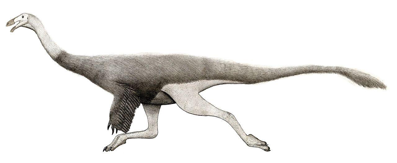 Datování kost dinosaura