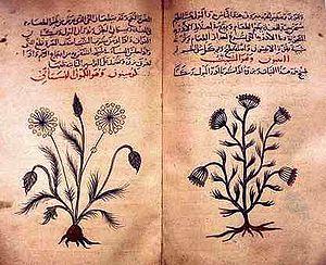 Arabic herbal medicine guidebook