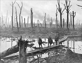 Chateau Wood Ypres 1917