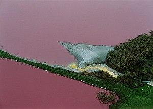 Environmental pollution 02