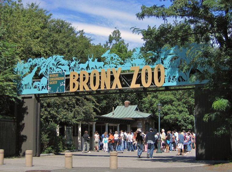 Bronx Zoo 001.jpg