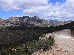 Rundreise durch Südafrika bei Oudtshoorn, Quelle: Wikipedia