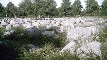 Das Steinlabyrinth in der Nähe des Viersener Hohen Buschs: Hier treffen sich die Mispelroute und die Nebenstrecke Nr. 91 der NiederRheinroute mit dem Irmgardispfad.