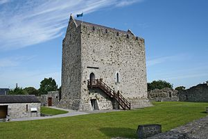 English: Athenry Castle - Ireland