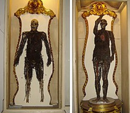 Risultati immagini per macchine anatomiche