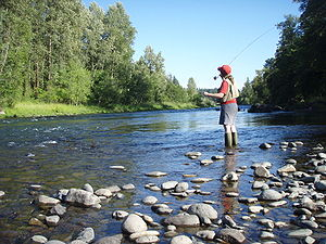 Fly fishing on the South Santiam river in Oregon