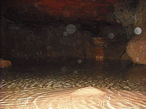 Photograph taken within Clearwell Caves, exhib...