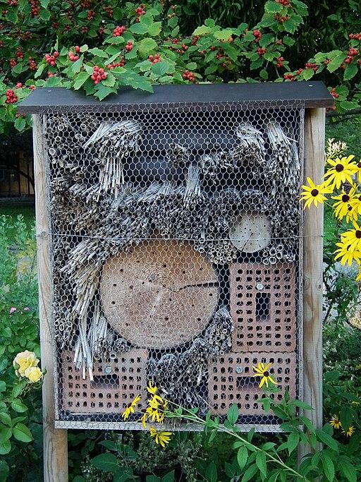 Botanischer Garten Insektenhotel
