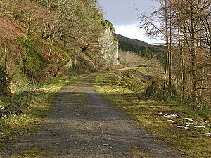 Forestry track above the Rheidol Power Station...