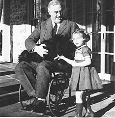 Roosevelt in wheelchair with dog