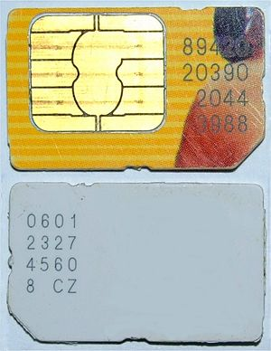 Two cellphone SIM cards (bottom and top)