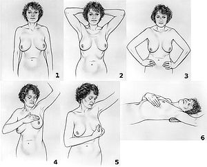 A series of six illustrations showing how to d...