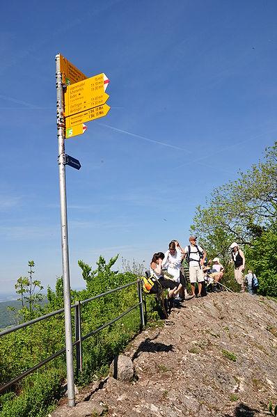 Lägern - Jura-Höhenweg