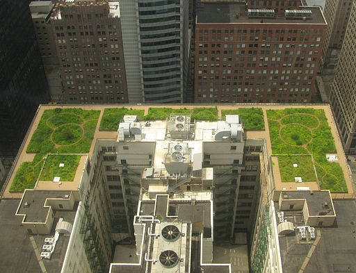 Bay Area green roofing might look like this
