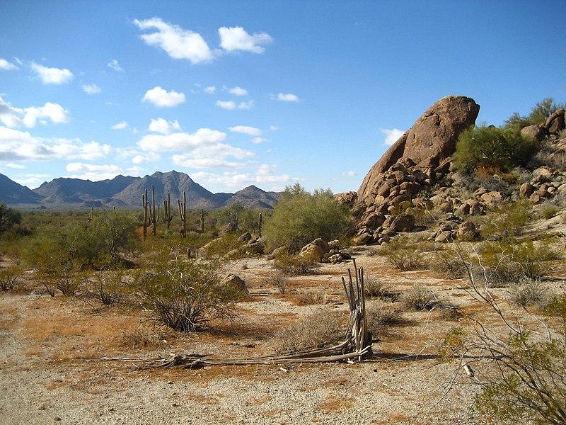 File:Sonoran Desert 33.081359 n112.431507.JPG