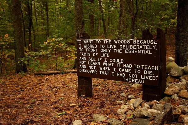 File:Thoreaus quote near his cabin site, Walden Pond.jpg ...