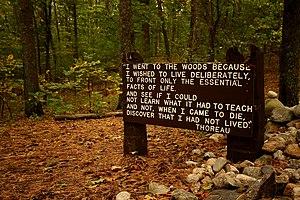 Thoreau's quote near his cabin site, Walden Pond.