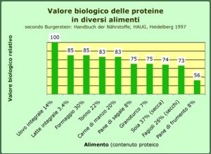Italiano: Valore biologico di proteine in alim...