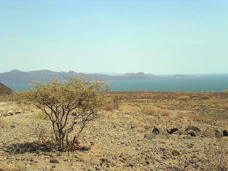 Lake Turkana. Credit: Wikimedia.org