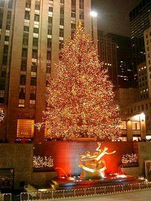 The Rockefeller Center Christmas Tree in New Y...