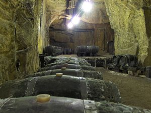 A wine cave in the Loire Valley wine region of...