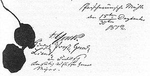 Unterschriften der Generäle Yorck und Diebitsc...