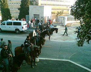 Police cavalry in Israel