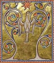 Phénix renaissant de ses cendres, enluminure du Bestiaire d'Aberdeen