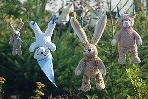 teddys on a clothesline