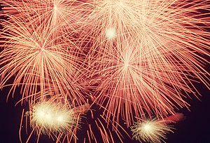 Canada Day fireworks in Etobicoke's Centennial...