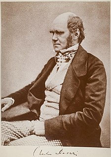 Three quarter length studio photo showing Darwin's characteristic large forehead and bushy eyebrows with deep set eyes, pug nose and mouth set in a determined look. He is bald on top, with dark hair and long side whiskers but no beard or moustache. His jacket is dark, with very wide lapels, and his trousers are a light check pattern. His shirt has an upright wing collar, and his cravat is tucked into his waistcoat which is a light fine checked=
