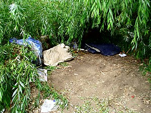English: A homeless person's shelter under a f...
