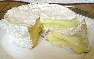 Camembert of Normandy - French cheese