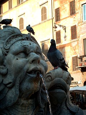 English: Fountain Sculpture in Rome.