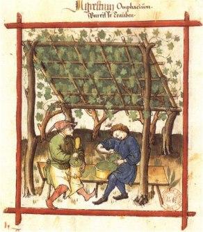 Fabrication du verjus BnF Latin 9333 fol. 83