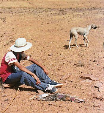 English: Rabit hunter in Morocco. Clandestine ...