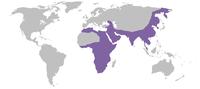 Mapa de distribuição do leopardo.