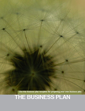 English: Cover for the Sustainable Business Book.