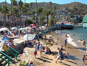 Crowded summertime beach in Avalon, Santa Cata...