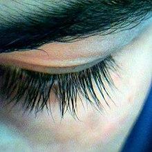 220px Eyelashes - Vellos humano anatomía y función