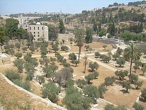 English: Mount of Olives.