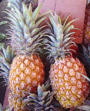 Pineapple victoria dsc07770