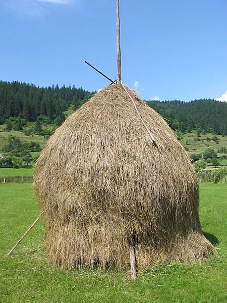File:Romanian hay.jpg