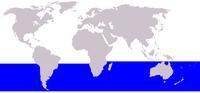 Distribuição da baleia-minke-antártica-anã