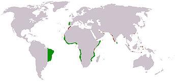 Mapa do Império Português durante o reino de D. João III.