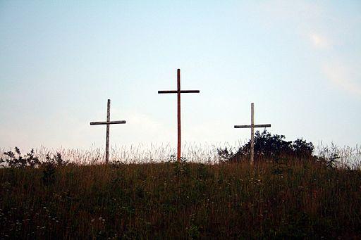 Old Rugged Crosses ForestWander